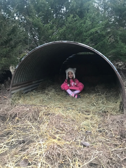 Brynn testing out our new hog houses.